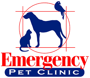 Emergency Pet Clinic Corpus Christi